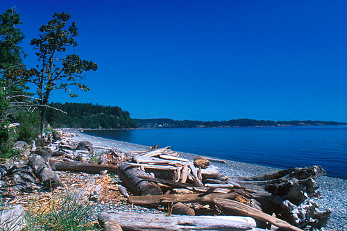 The Beach on Juan de Fuca Strait in Devonian Park, Metchosin, Victoria, Vancouver Island, British Columbia, Canada