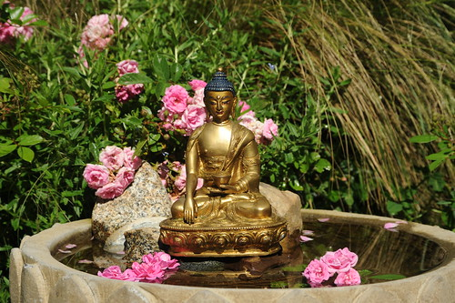 Statue of Lord Buddha in earth touching mudra holding begging bowl, fountain, pink roses, mid-summer, Mexican grass, Tibetan Buddhist style, A Garden for the Buddha, Seattle, Washington, USA | by Wonderlane