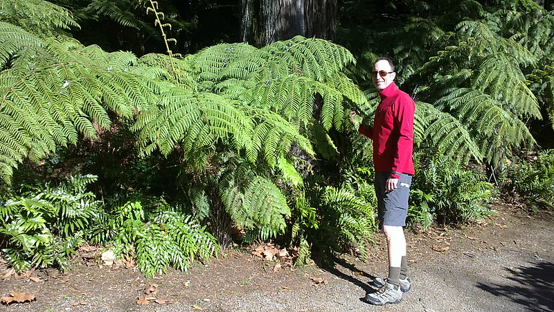 Exploring Taranaki - New Plymouth Attractions