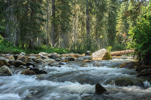 Little North Fork of the Clearwater River | by Trail Image