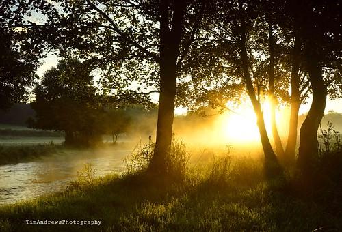mist sunrise hertfordshire nikond3200 tewin rivermimram tewinwatermeadows nikon1024mm hertfordshirelandscape timandrewsphotography
