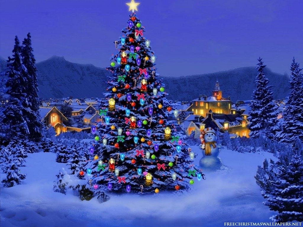 Cool Christmas Tree.Cool Christmas Tree Background Wallpapers Sally Tudor Flickr