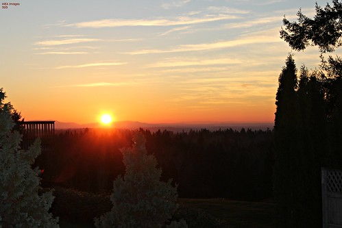 trees sunset sun nature washington graham canoneos60d picmonkey:app=editor