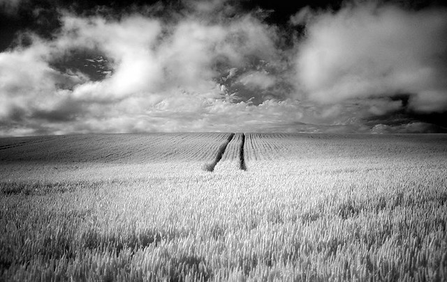 Chew valley infrared