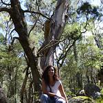 06 Viajefilos en Australia. Cathedral Rock NP 15