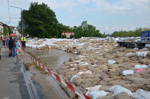 9022433879 7f8a20d2ba Elbehochwasser   Juni 2013