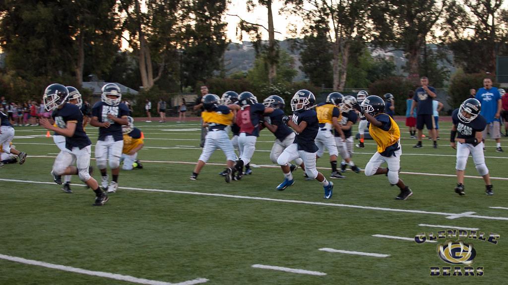 DSC_0483 | Glendale Bears | Flickr |Glendale Bears 2013