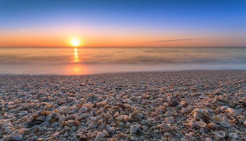 ocean sunset sky sun shells beach clouds seashells sand surf waves unitedstates florida horizon wave seashell fl marcoisland hanusiak