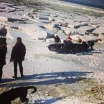 Course de canots à glace