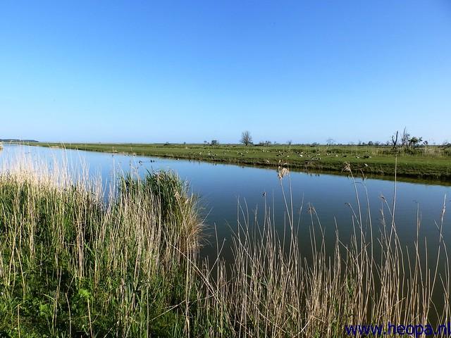2014-05-31 4e dag  Almeer Meerdaagse  (3)