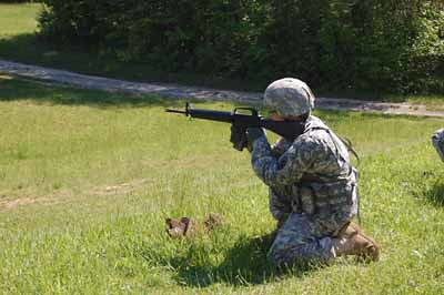 bwc-rifle-arcd-2
