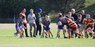 IMG_5426 | by Takapuna Rugby