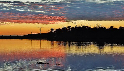 sunset nikon wetlands coolpix artisticphotography bolsachica orangecountyca bolsachicawetlands huntingtonbeachca bolsachicaecologicalreserve californiawetlands p510 brilliantsunset coastalwetlands walkingbolsachica janeelizabethlazarz pacificcoastalwetlands