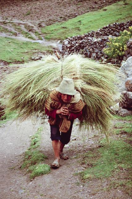 Campesino quechua, Cusco,  1989