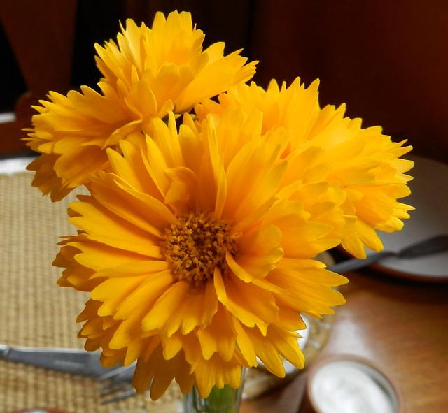 flores Ollantaytambo Perú 02
