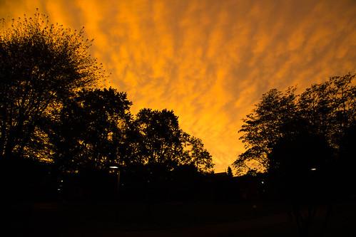 sunset newjersey dusk silhouettes princeton