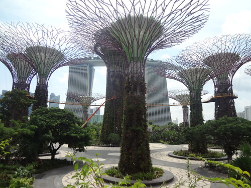 Gardens by the Bay Supertrees | by gunman47