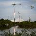 MAVEN Atlas V Launch by NASA Goddard Photo and Video