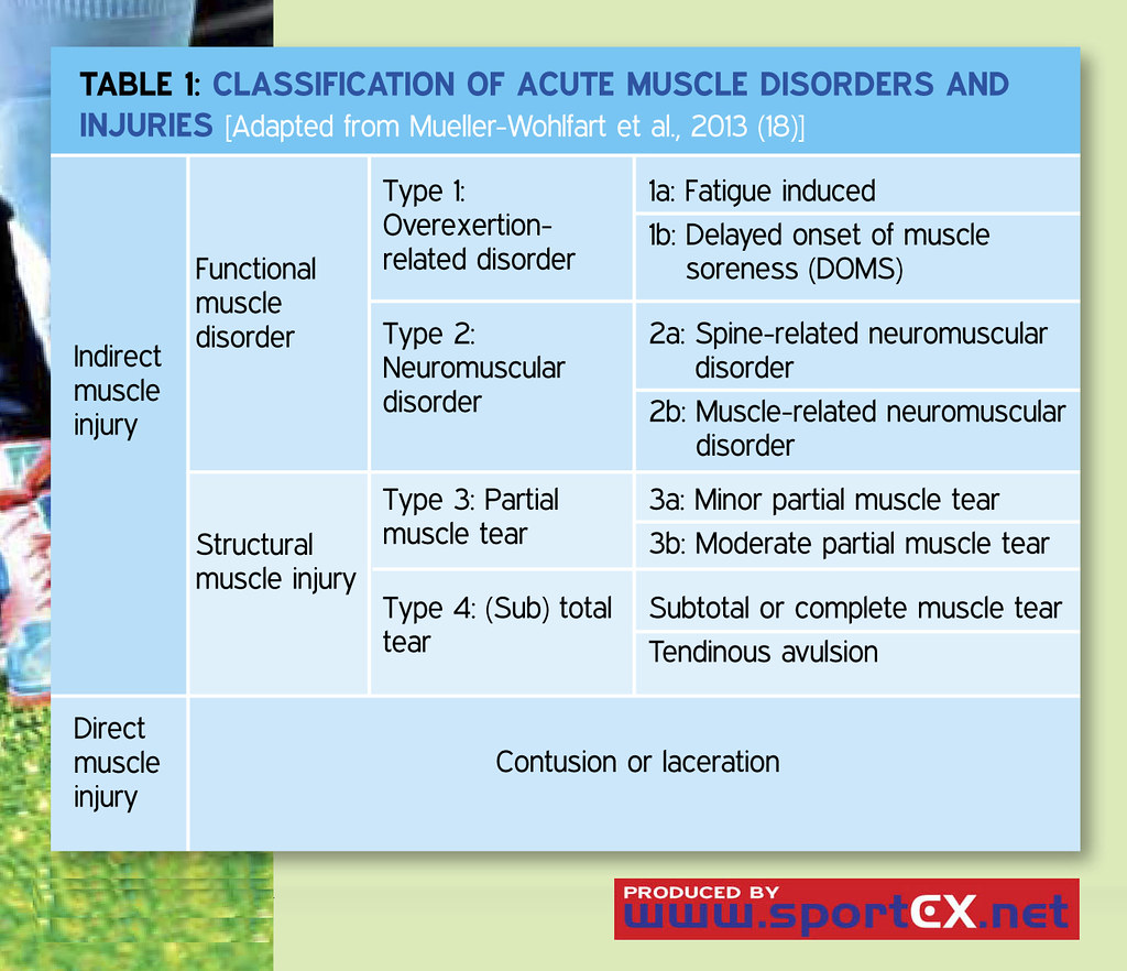 Classification of acute muscle disorders and injuries | Flickr