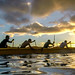 Then Tech. Sgt. Alfred Van Gieson, now Master Sgt., left, of 48th Aerial Port Squadron, 624th Regional Support Group, Joint Base Pearl Harbor-Hickam, coaches a six-man outrigger canoe crew during a training session in the waters off Kalaianaole Beach Park in Nanakuli, Oahu, Hawaii, Aug 9, 2016. Van Gieson is a veteran of Operation Iraqi Freedom, a world champion outrigger, or Va'a, paddler and the coach at the Leeward Kai Canoe Club, which was founded by his grandparents. (U.S. Air Force photo by J.M. Eddins Jr.)
