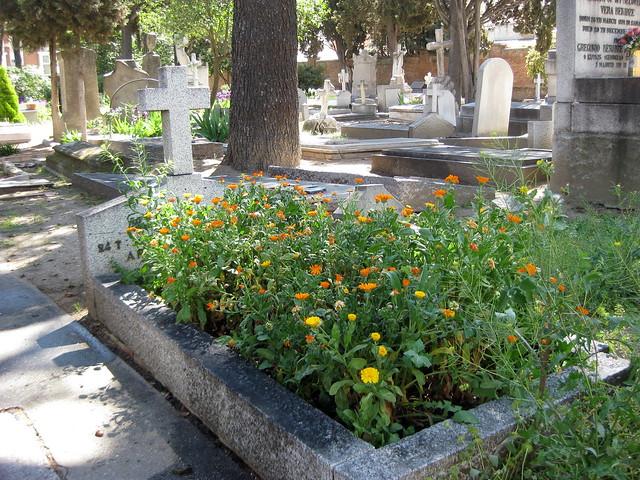 Cementerio Británico.Madrid