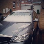 So apparently it snowed last night!