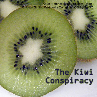 The Kiwi Conspiracy | by HonestReporting.com