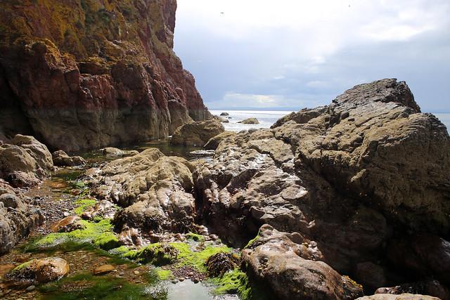 The coast at Nigg