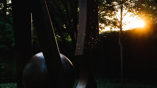 Sunset Bugs