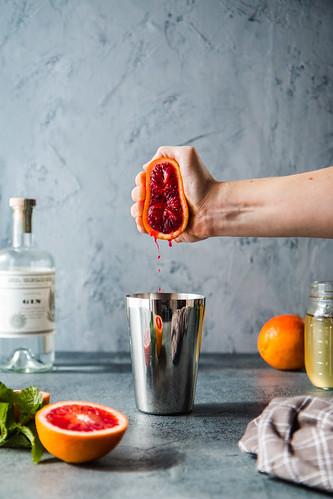 Blood Orange Vanilla Bean Gin And Tonic | by WillCookForFriends