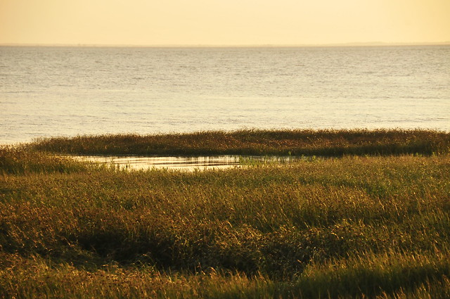 The Gironde Delta (2)