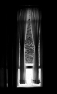 Window | by limrodrigues