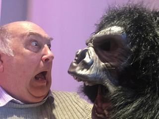 Gorilla attack ! 324-365 (10) | I went to the American Dream