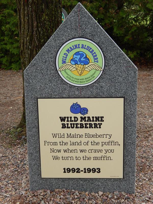 Grafsteen Wild Maine Blueberry @ Ben & Jerry's
