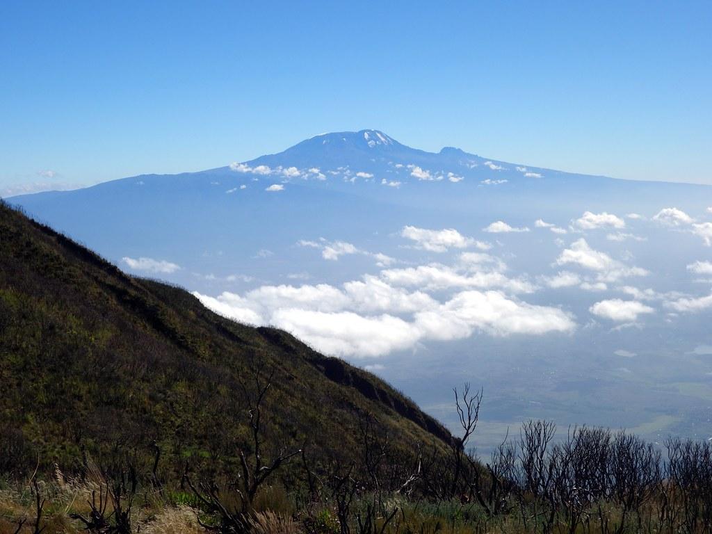 Kilimanjaro from Saddle Huts