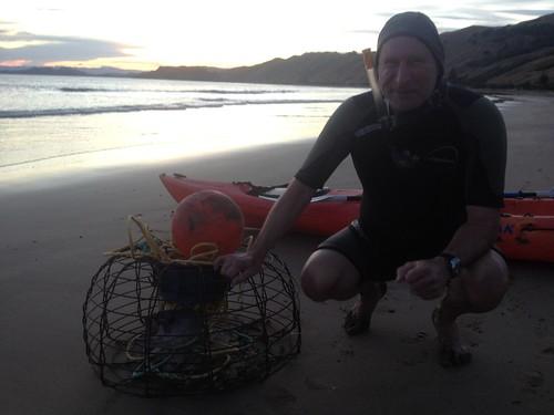 crays crayfish makorori beach gisborne okitu nz aotearoa
