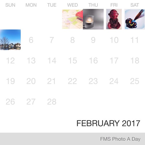 FMS Photo A Day February  2017 | by Laurel Storey, CZT
