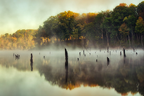 statepark wood autumn trees ohio sky sun mist lake cold reflection fall water colors fog clouds sunrise landscape pond day cincinnati branches logs chill hdr highdynamicrange stumps eastforklake