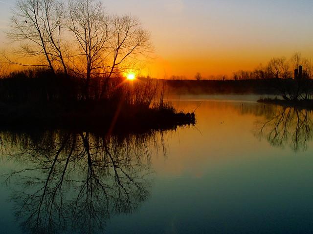 Wetland Sunrise