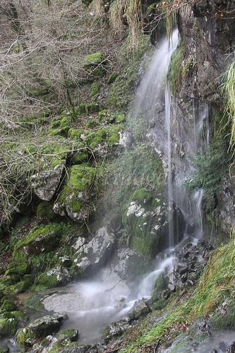 Parque Natural de Gorbeia #DePaseoConLarri #Photography 2591