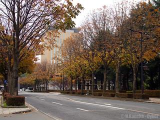 秋色の奥州街道 (Oshu Kaido in autumn)   by cyber0515