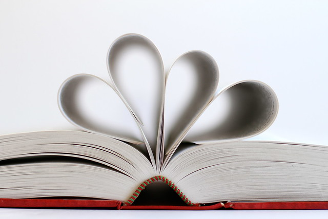 Book lover [Explored]