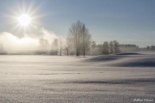 sky snow tree ice nature vegetables fog canon landscape outdoors sweden adventure