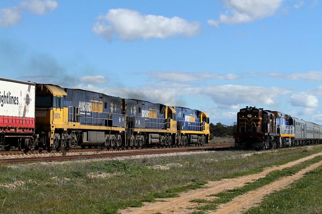 NR95 NR119 NR14 6SP6 crossin 4520 CF4409 6L64 Peterborough 10 08 2013 by Daven Walters