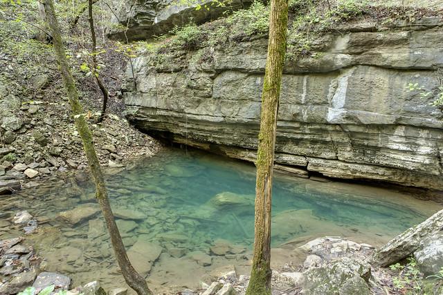 Big Spring 2, Bridgestone Firestone Centennial Wilderness WMA, White Co, TN