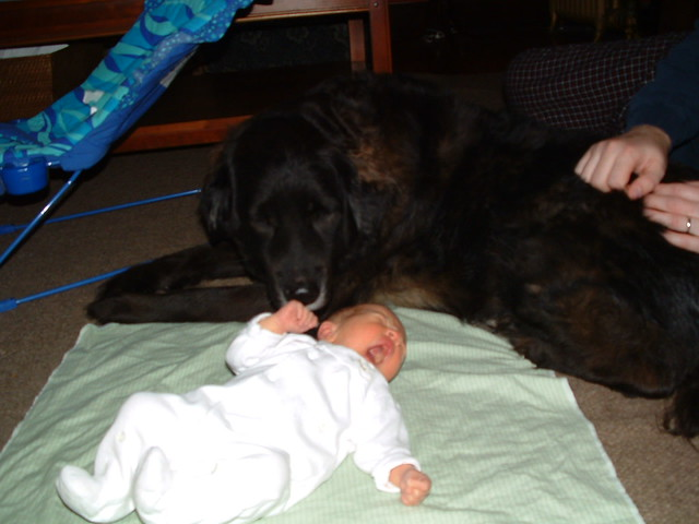 Her protector