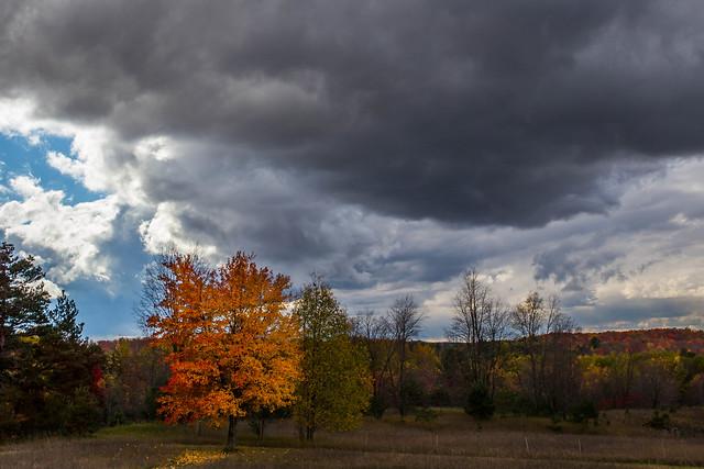 Autumn vs Mother Nature