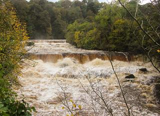 Aysgarth Falls, Wensleydale, North Yorkshire