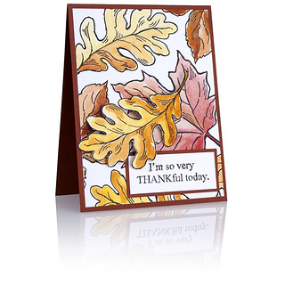 CRS5052_Leaves Card_DH_800 | by Stampendous