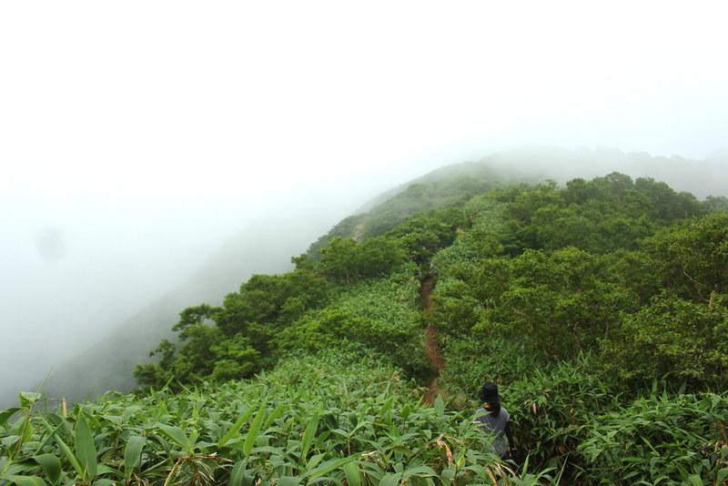 荒島岳_44